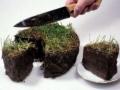 Возросли штрафы за самозахват и нецелевое использование земли