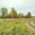 Земельный участок 10 сот, ИЖС, близ Ижевска