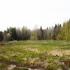 Продам З\У 1 Га с прудом в лесу , до участка асфальт 18:08:019003:1481